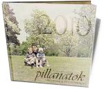 Haladó Cewe Fotókönyv minta - Pillanatok 2010